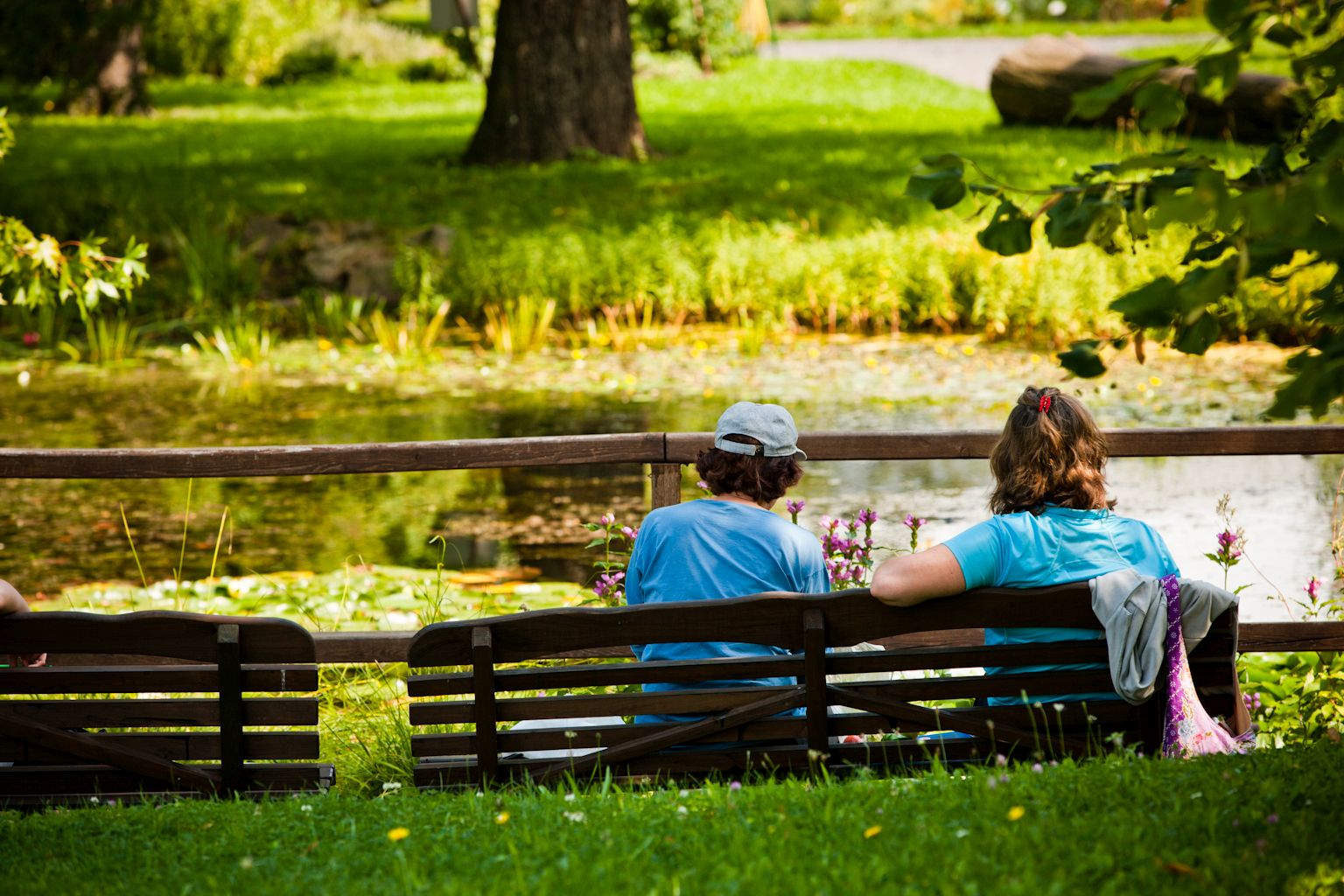 Sitzbänke vor dem Teich im Außenbereich des Botanischen Gartens