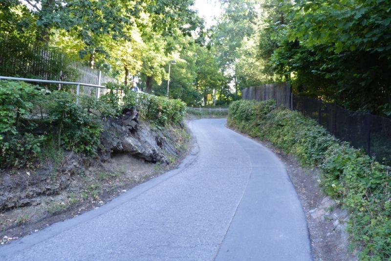 Einen Straße geht den Berg hinauf. Links und rechts befinden sich grüne Bäume.