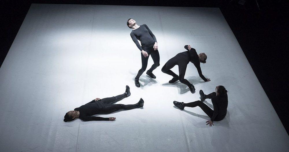 Cocoon Dance, VIS MOTRIX